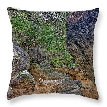Throw Pillow featuring the photograph The Guide by Olga Hamilton