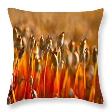 The Haircap Moss Throw Pillow
