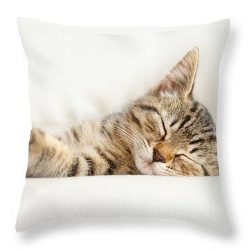 The Happy Kitten Throw Pillow
