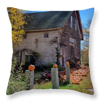 The Harvest Is In Throw Pillow by Jeff Folger