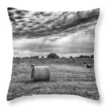 The Hay Bails Throw Pillow by Howard Salmon