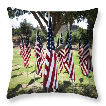 The Healing Field Throw Pillow