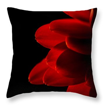 The Heat Of Your Gaze Throw Pillow