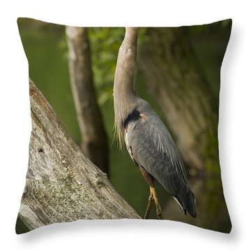 The Heron And The Turtle Throw Pillow