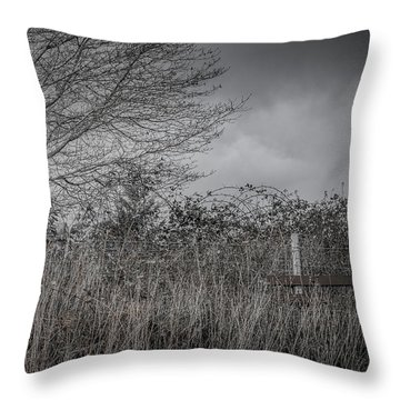 The Hidden Bench 2 Throw Pillow