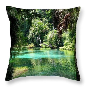 The Hidden Spring Throw Pillow by Judy Wanamaker