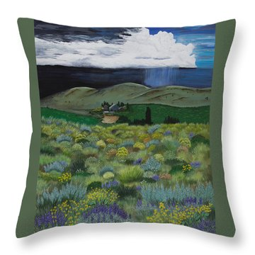The High Desert Storm Throw Pillow by Jennifer Lake