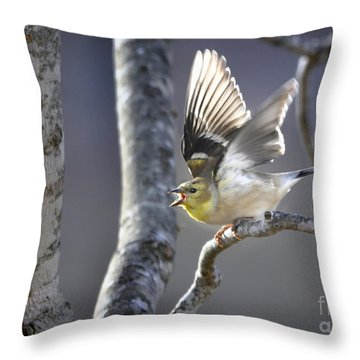 The High Notes Throw Pillow