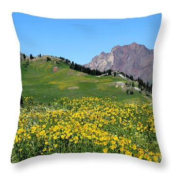 The Hills Are Alive Throw Pillow by Marty Fancy