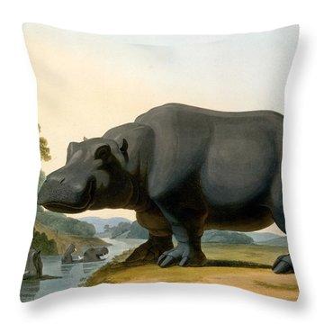 The Hippopotamus, 1804 Throw Pillow by Samuel Daniell