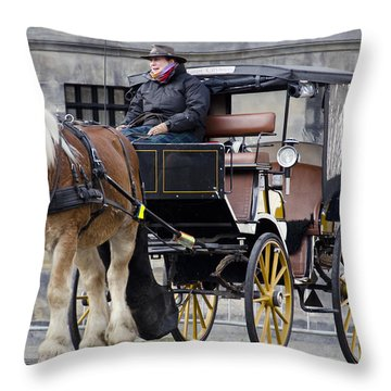 The Horse Buggy Throw Pillow by Pravine Chester