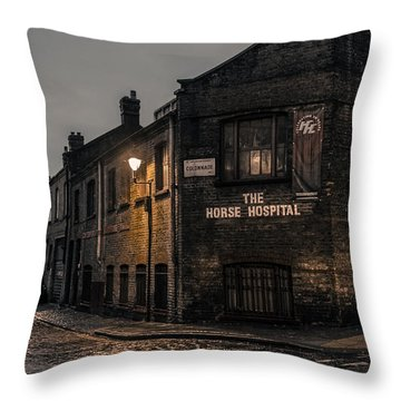 The Horse Hospital Throw Pillow