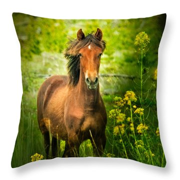 The Horse In The Wildflowers Throw Pillow