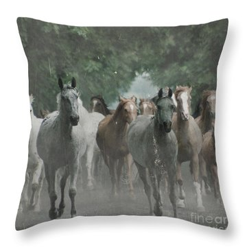 The Horsechestnut Tree Avenue Throw Pillow by Angel  Tarantella