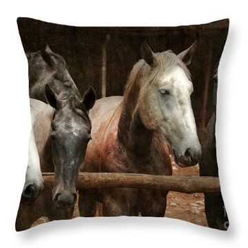 The Horses Throw Pillow by Angel  Tarantella