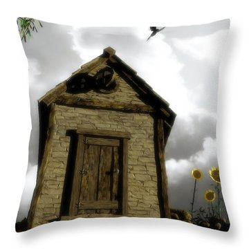 The House Of Light And Shadow Throw Pillow by Cynthia Decker
