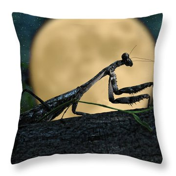 The Hunter Throw Pillow by Karen Slagle