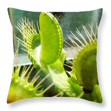 The Hurt Locker Throw Pillow by Steve Taylor