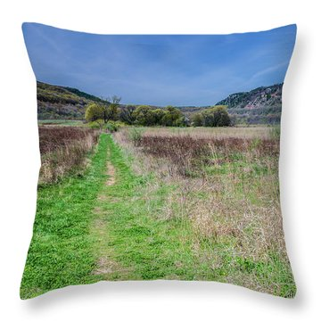 The Ice Age Trail Throw Pillow by Jonah  Anderson