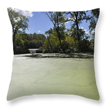 The Indiana Wetlands Throw Pillow