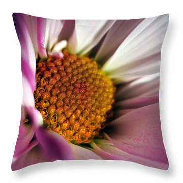 The Inner Soul Throw Pillow by Wanda Brandon