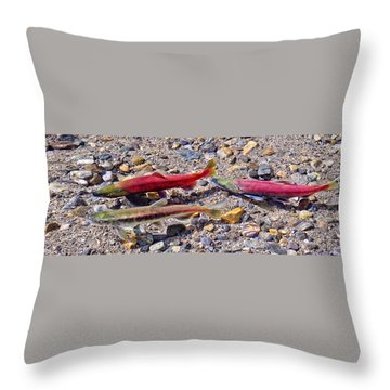 Throw Pillow featuring the photograph The Interloper by Jim Thompson