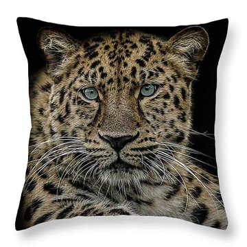 The Interrogator  Throw Pillow