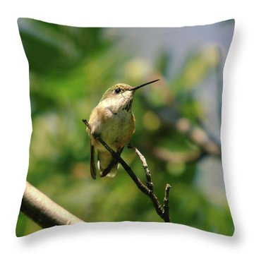 The Intimidating Watchman Throw Pillow by Jeff Swan