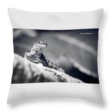 Throw Pillow featuring the photograph The Iron Lizard II by Stwayne Keubrick