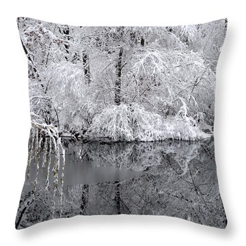 The Island.... Throw Pillow
