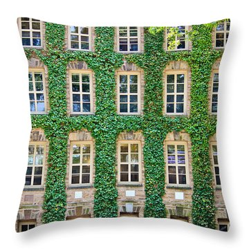 The Ivy Walls Throw Pillow by Colleen Kammerer