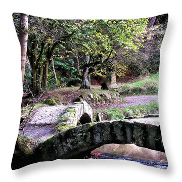 The Journey Forwards Throw Pillow