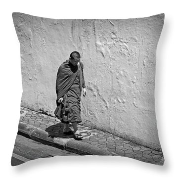 Throw Pillow featuring the photograph The Journey  by Lucinda Walter