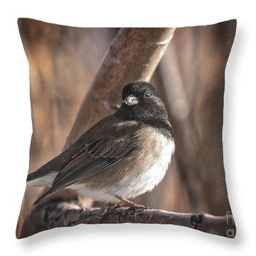 Throw Pillow featuring the photograph The Junco by Mitch Shindelbower