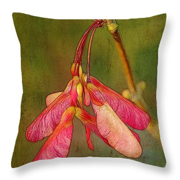 The Keys To Springtime Throw Pillow