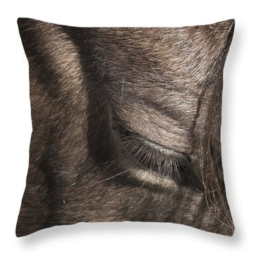 The Kind Eye Throw Pillow