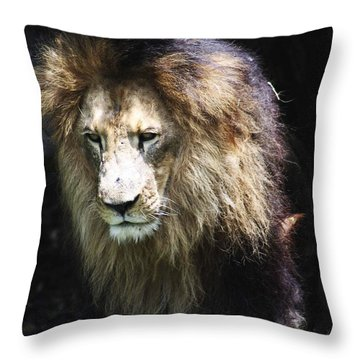 The King In The Shadows Throw Pillow