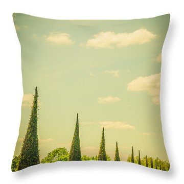The Knot Garden's Triangular Landscaping Throw Pillow