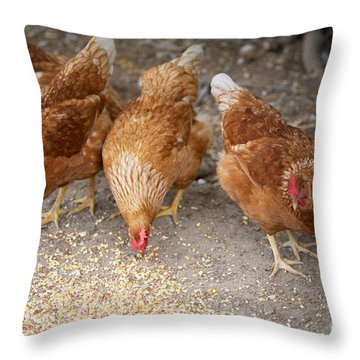 Throw Pillow featuring the photograph The Ladies by Erika Weber