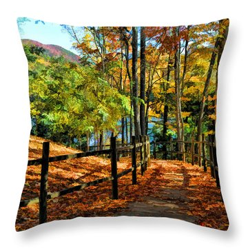 The Lake Path Throw Pillow by Kenny Francis