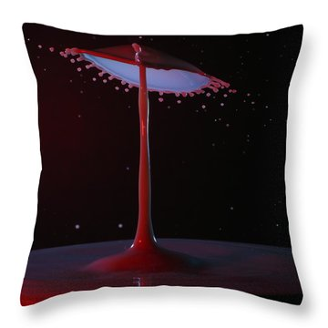 Throw Pillow featuring the photograph The Lamp by Kevin Desrosiers