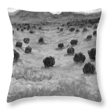 The Land In Between Black And White Throw Pillow