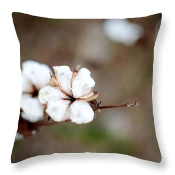 Throw Pillow featuring the photograph The Land Of Cotton by Linda Mishler