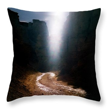 The Land Of Light Throw Pillow by Dubi Roman