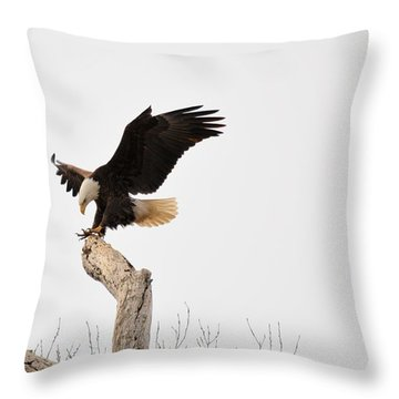 The Landing Throw Pillow by Bonfire Photography