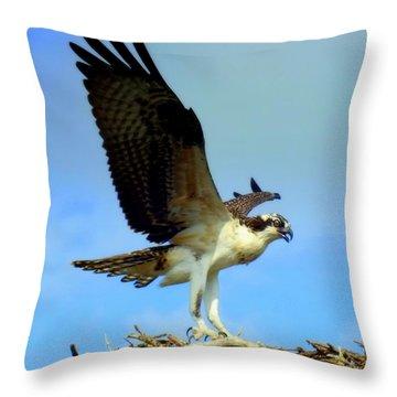 The Landing Throw Pillow by Karen Wiles