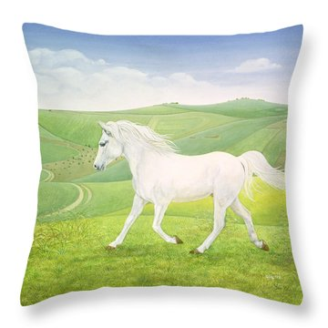 The Landscape Horse Throw Pillow by Ditz