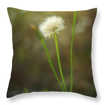 Throw Pillow featuring the photograph The Last Dandelion by Suzanne Powers