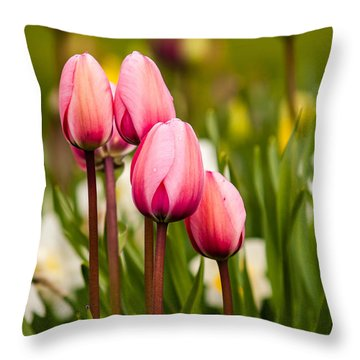 The Last Drops Of Dew Throw Pillow by Melinda Ledsome