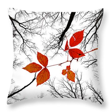 The Last Leaves Of November Throw Pillow